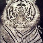 אומנות: ציורים ודיוקנים - טייגר